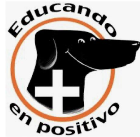 Educación canina y terapias alternativas