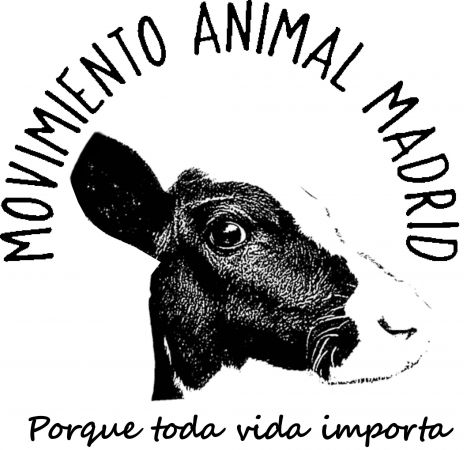 movimientoanimalmadrid@gmail.com