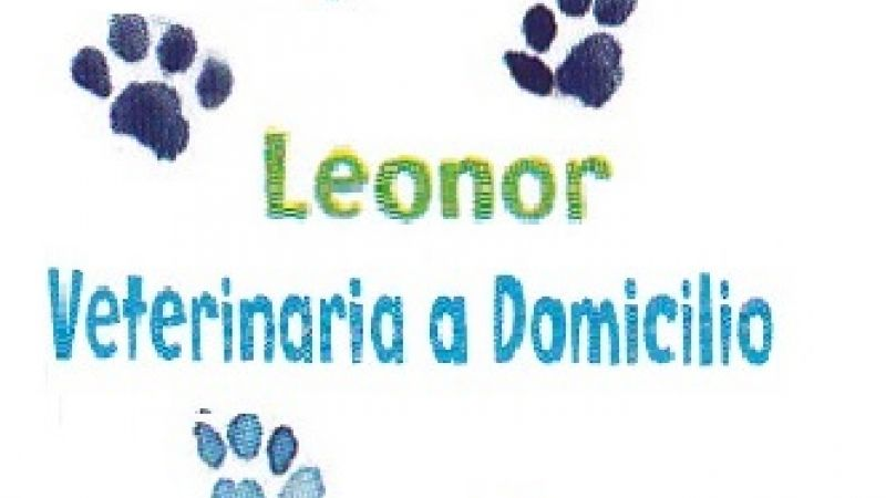 Leonor Veterinaria a Domicilio